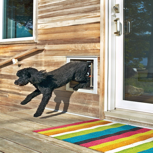 Kennel Gear Dog Doors