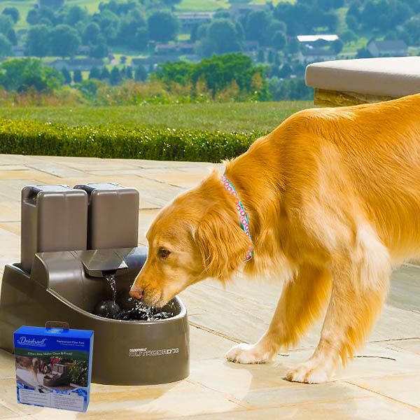 Drinkwell Outdoor Pet Fountain