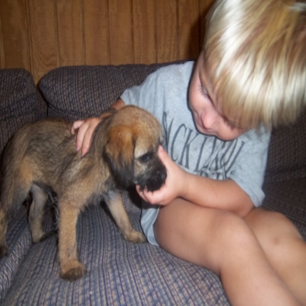 Dog Breeding And Socialize Your Puppy